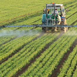 Pesticides and Residues